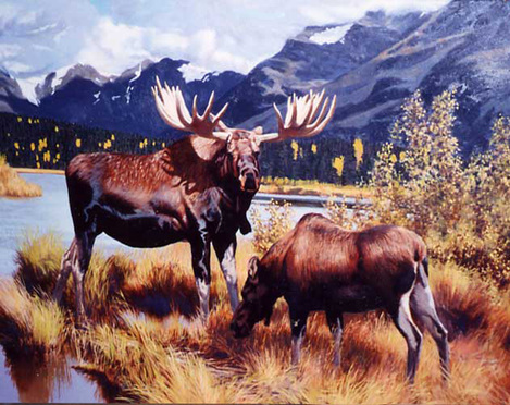 Moose Against the Mountains by Tom Beecham
