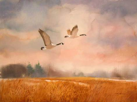 Geese by J. Earl Brown