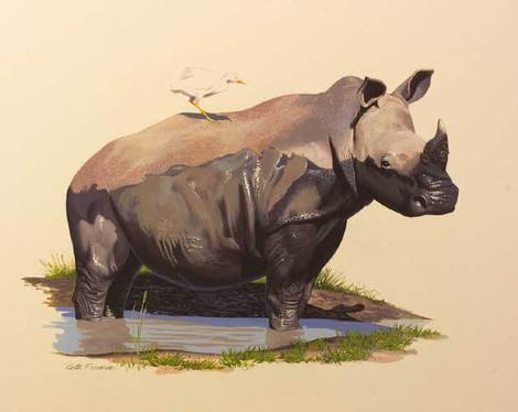 Rhinoceros by Keith Freeman